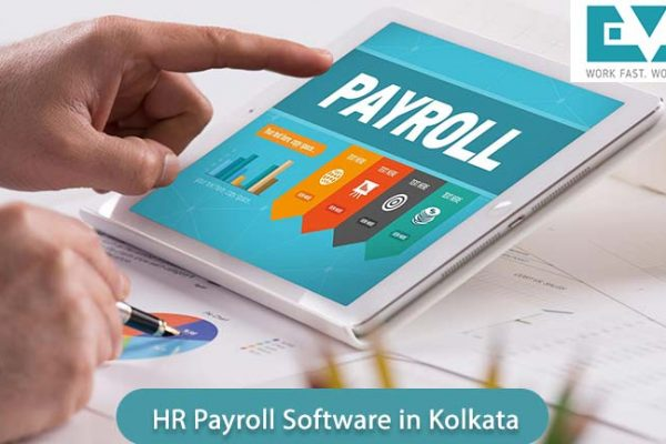 The Essential Benefits Of Implementing The HR Payroll Software